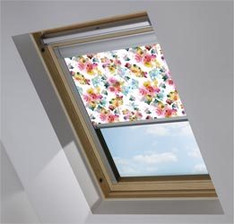 Skylight in Oriental Rose Translucent
