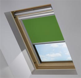 Solar Skylight in Ivy Blackout