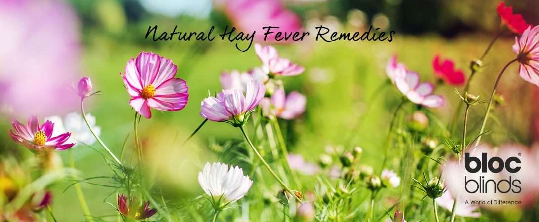 natural hay fever remedies bloc blinds